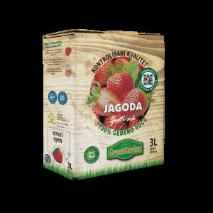 JAGODA 2a copy